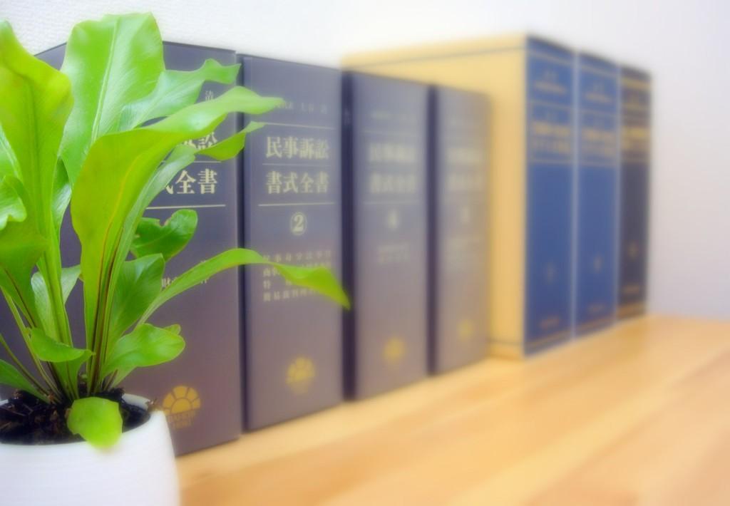 神奈川県川崎市の弁護士 澄川法律事務所